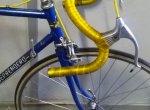 Bicicleta Berrendero